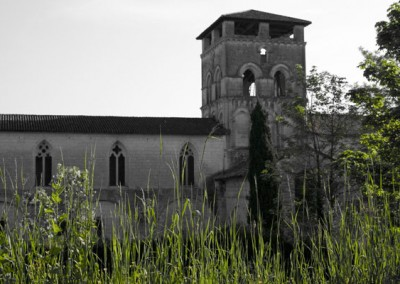 abbaye-dans-l-herbe
